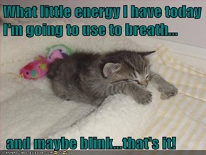 What little energy I have today I'm going to use to breath...   and maybe blink...that's it!
