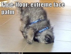 Face-floor: extreme face palm