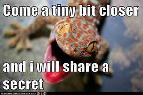 Come a tiny bit closer  and i will share a secret