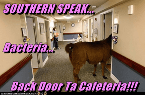 SOUTHERN SPEAK... Bacteria... Back Door Ta Cafeteria!!!