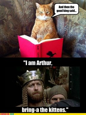 Meowy Purrathon and the Holy Grail, director's cat