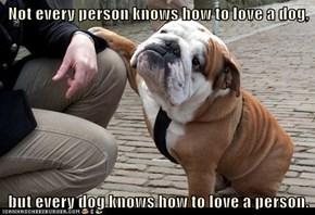 I Has A Hotdog: Hooman's Best Friend