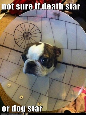 not sure if death star  or dog star