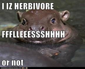 I IZ HERBIVORE FFFLLEEESSSHHHH or not