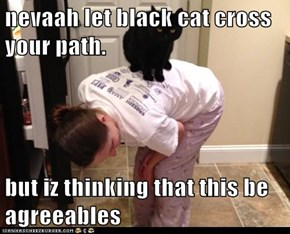 nevaah let black cat cross your path.  but iz thinking that this be agreeables
