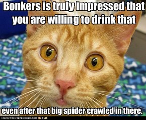 Bonkers is truly impressed that you are willing to drink that