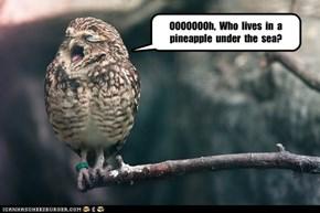 OOOOOOOh,  Who  lives  in  a  pineapple  under  the  sea?
