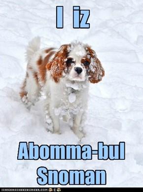 Abomma-bul