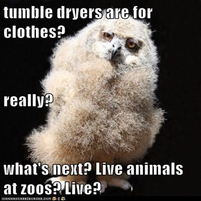 tumble dryers are for clothes? really? what's next? Live animals at zoos? Live?
