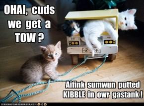 OHAI,  cuds  we  get  a  TOW ?