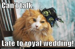 Can't talk.  Late to royal wedding!