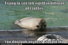 Trying to see teh world in diffrent perspekiv  You don look any less stoopid tho