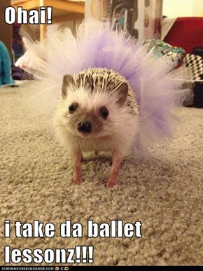 Ohai!  i take da ballet lessonz!!!