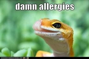 damn allergies