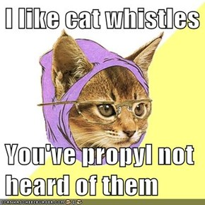 I like cat whistles   You've propyl not heard of them