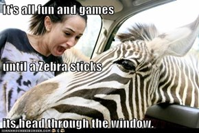 It's all fun and games until a Zebra sticks its head through the window.