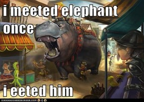 i meeted elephant once  i eeted him