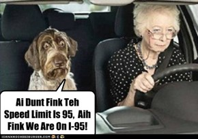 Ai Dunt Fink Teh Speed Limit Is 95,  Aih Fink We Are On I-95!