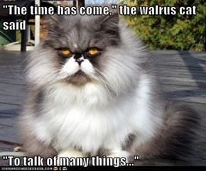 """The time has come,"" the walrus cat said  ""To talk of many things..."""