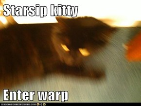 Starsip kitty   Enter warp