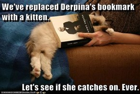 We've replaced Derpina's bookmark with a kitten.