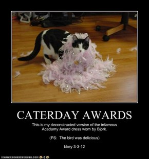 CATERDAY AWARDS