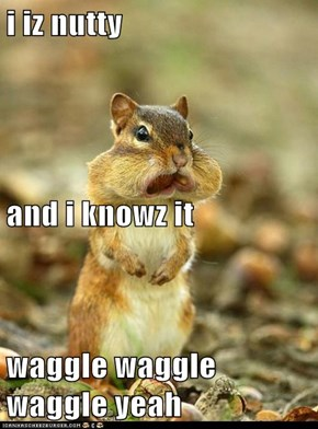 i iz nutty and i knowz it waggle waggle waggle yeah