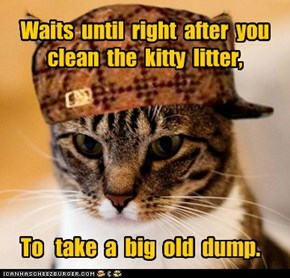 Scumbag Cat: Then Doesn't Bury It