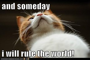 and someday  i will rule the world!