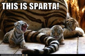 THIS IS SPARTA!