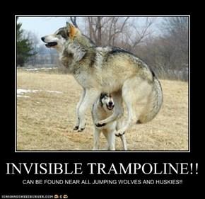 INVISIBLE TRAMPOLINE!!