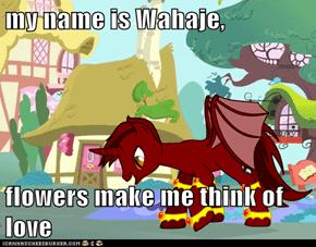 my name is Wahaje,  flowers make me think of love