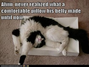 Alvin  never realized what a comfortable pillow his belly made until now.