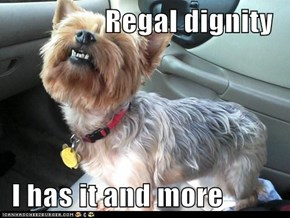 Regal dignity   I has it and more
