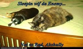 Sleepin wif da Enemy...  Not so Bad, Akshully