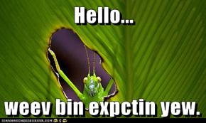 Hello...   weev bin expctin yew.