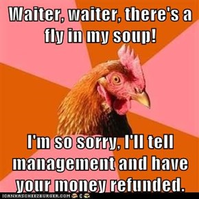 Waiter, waiter, there's a fly in my soup!  I'm so sorry, I'll tell management and have your money refunded.