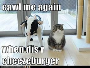 cawl me again  when dis r cheezeburger