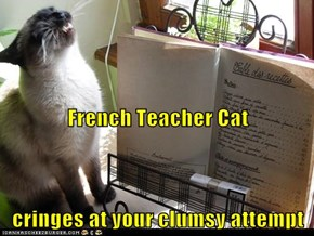 French Teacher Cat cringes at your clumsy attempt
