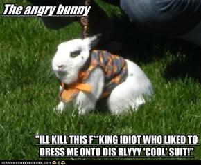 Angry bunny is angry