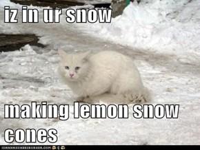 iz in ur snow  making lemon snow cones