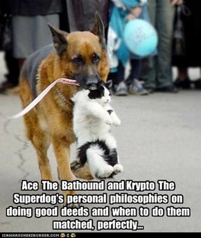 Ace  The  Bathound  and Krypto  The  Superdog's  personal  philosophies  on  doing  good  deeds  and  when  to  do  them  matched,  perfectly...