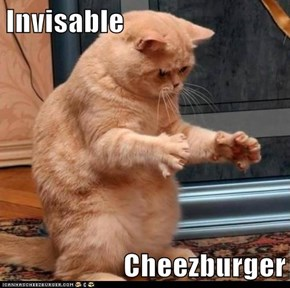 Invisable  Cheezburger