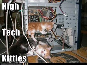 High Tech Kitties
