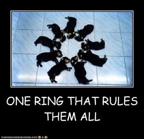ONE RING THAT RULES THEM ALL
