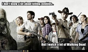 I don't know a lot about killing zombies...