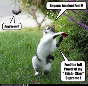 Begone, Insolent Fool !!