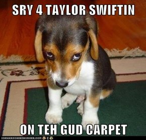 SRY 4 TAYLOR SWIFTIN  ON TEH GUD CARPET