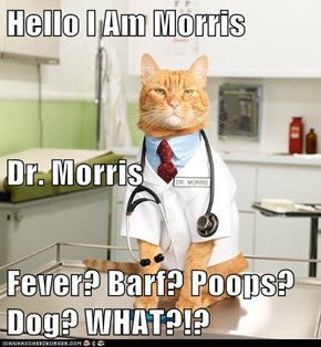 Hello I Am Morris Dr. Morris Fever? Barf? Poops? Dog? WHAT?!?