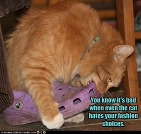 You know it's bad when even the cat hates your fashion choices.